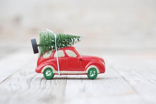 Ako správne prevážať vianočný stromček?